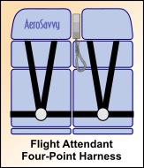 AeroSavvy - Buckle Up! Airline Seat Belts